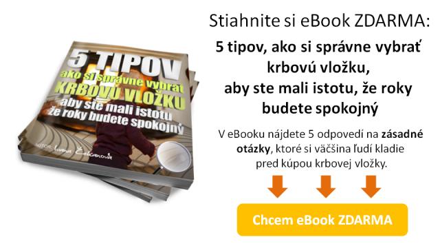 ebook-5-tipov-ako-si-spravne-vybrat-krbovu-vlozku-preklik-obr2